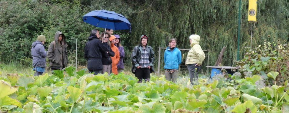 Young Agrarians @ Lohbrunner Farm